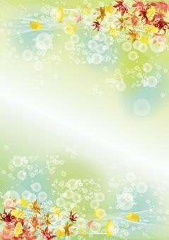秋葉和銀杏50