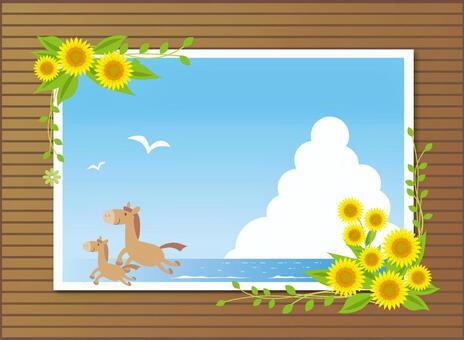 夏天的記憶框架