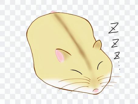 吮倉鼠(星期五)