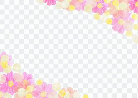 花材077波斯菊框架