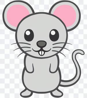 老鼠或老鼠