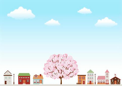 Cherry blossoms 126