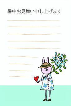 Flower bunny hot weather sympathy