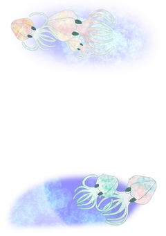 Aori squid (with background)