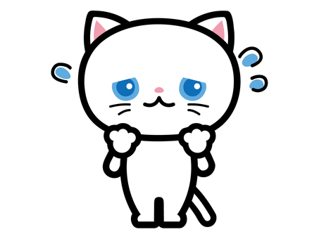 白貓遇到麻煩不耐煩