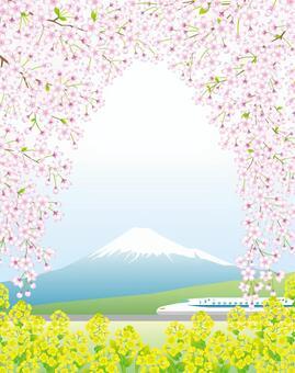 桜の花のアーチ