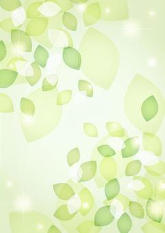 Glitter background of fresh green leaves