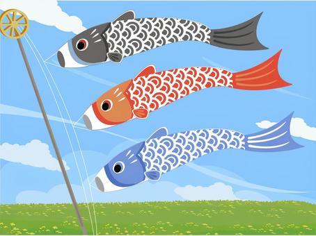 五月風光鯉魚旗和油菜花