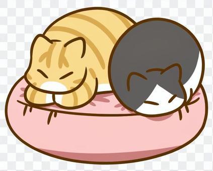 クッションで寝る猫