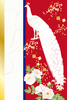 White peacock ___ New Year's gathering _ Red