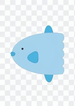 Sunfish 2