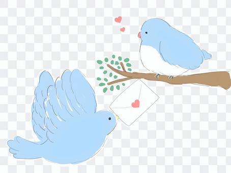 ラブレターを渡す小鳥