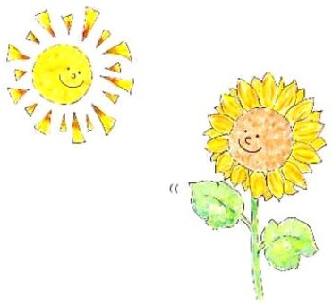 Sunflower and sunflower ①
