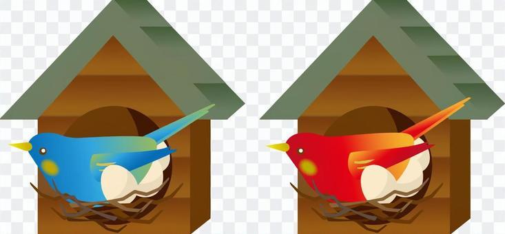 Bird's nest egget