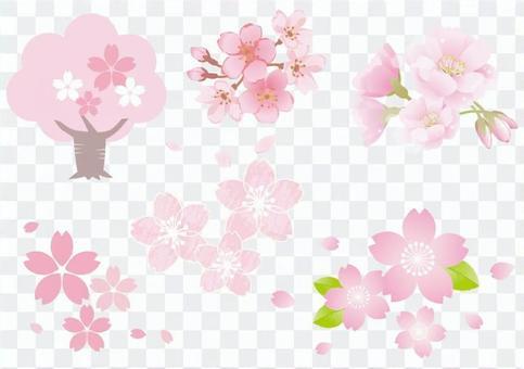 樱花材料9