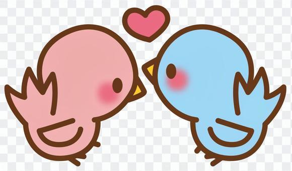 Bird * Couple