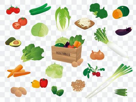食品/蔬菜