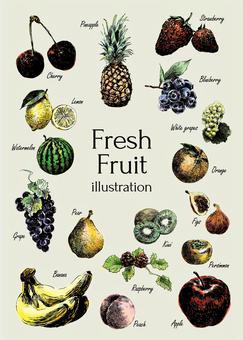 新鮮水果的插圖