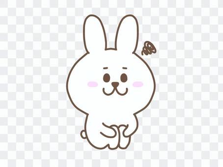 玩兔子/體操坐