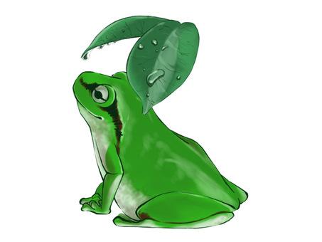 青蛙(雨棚)