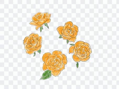 玫瑰花只橙