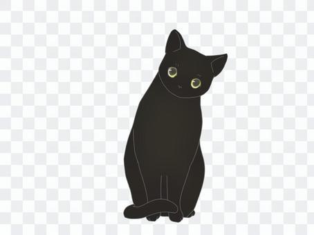 脖子小的黑貓