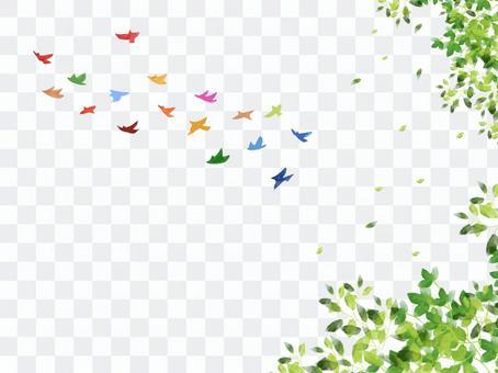17 색의 새들과 신록 SDGs 이미지