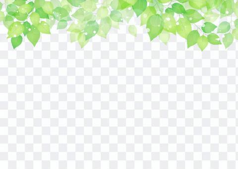 新的綠色材料226