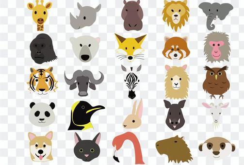 25只動物
