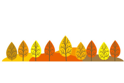 Line of fallen leaves trees in autumn