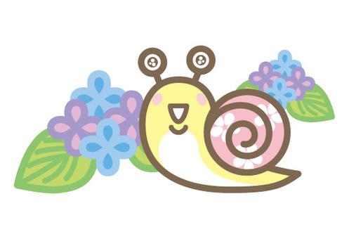 繡球花Mutsumi