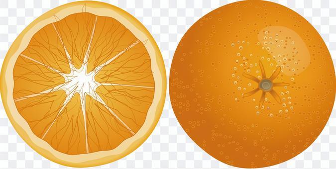 オレンジ ネーブル みかん