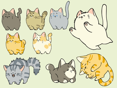 The second set of loose cats