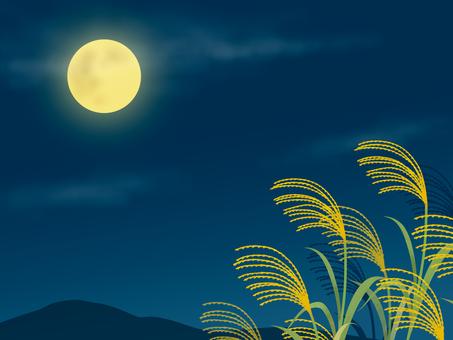 참억새와 보름달 2