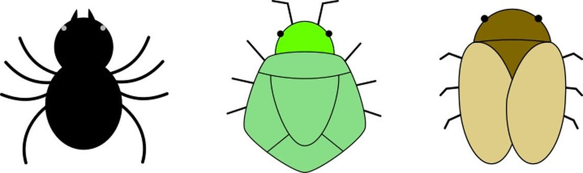 Insects that are not good at