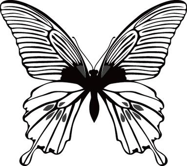 蝴蝶(單色)