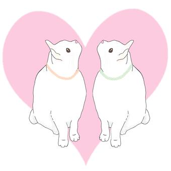 LOVE cat (heart size)