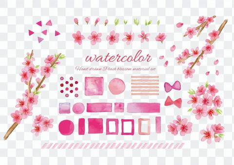 Watercolor style peach blossom and material set