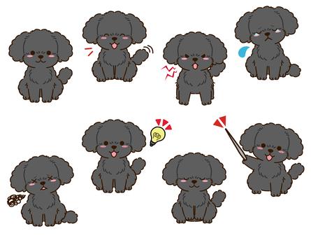 玩具貴賓犬(黑色)姿勢合集