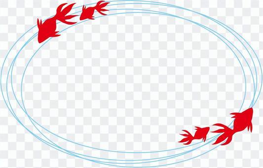 金魚(從上面)