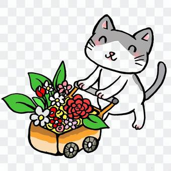 Flower shop of cat