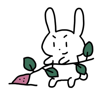 兔子挖土豆