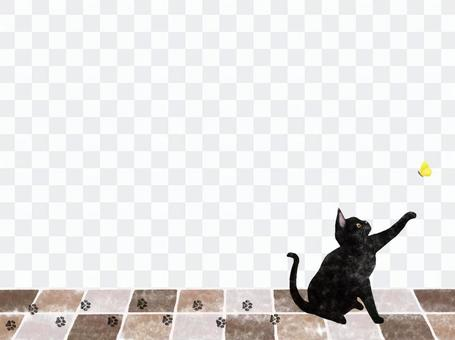 Black cat frame playing with a butterfly