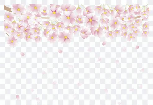 櫻花圖案3-2-4