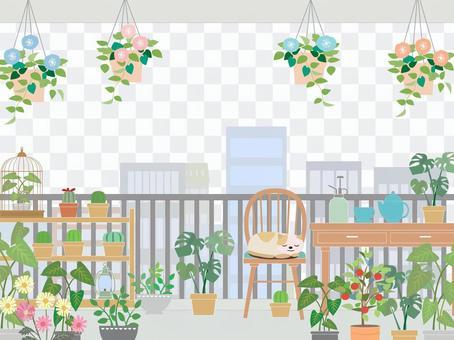 Veranda gardening