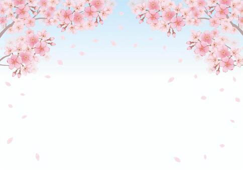 櫻桃框架28