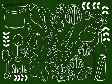 Blackboard seashell