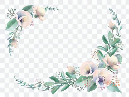 春季美麗的野花