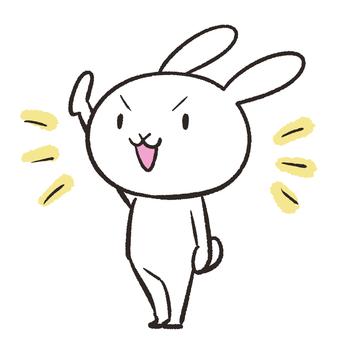Rabbit raising hands
