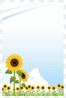 Sunflower and the sky in hot summer backdrop 04